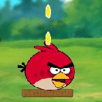 Накорми злых птичек