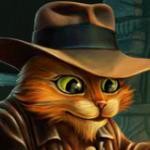 Инди-кот во Одноклассниках