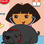 Даша спасает собак