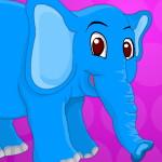 Лечение слона