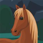 Квест с лошадьми
