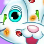 Уход За Пасхальным Кроликом
