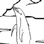 Разукрась дельфина