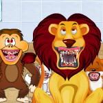 Зубной ветеринар