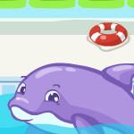 Ленивый дельфин