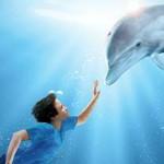 Поиск цифр История дельфина