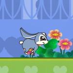 Приключения кролика Кико