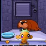 Счастливая обезьянка: Сейф