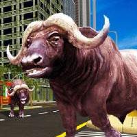 Нашествие быков