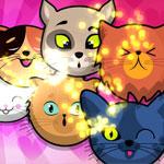Котята пузыри