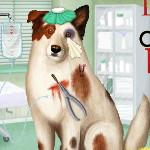 Ветеринарная клиника для собак