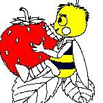 Раскраска пчелы
