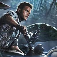 Поиск яиц динозавров