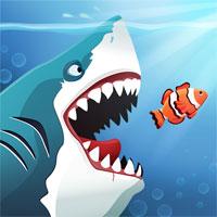 🦈Злая акула