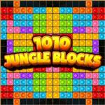 1010 блоков