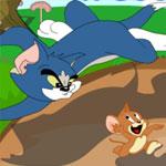 Дружба Тома и Джерри